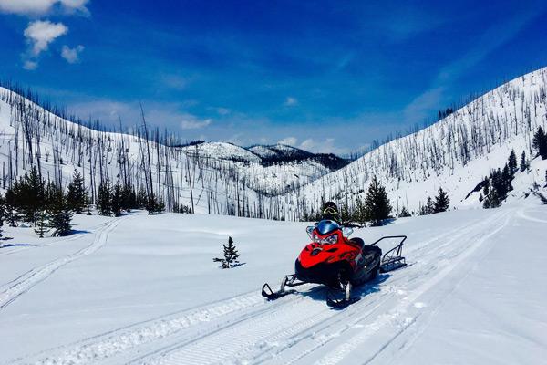 Fish and Wildlife - Snowmobile Into Salmon