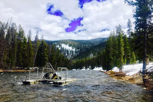Fish and Wildlife - Salmon RST